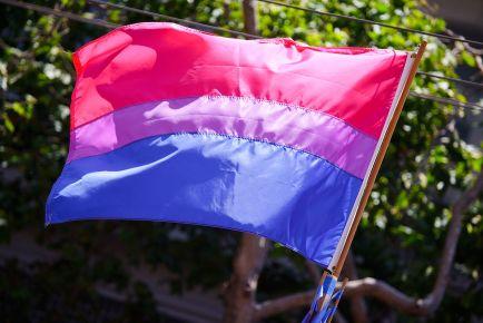 The_bisexual_pride_flag_(3673713584)